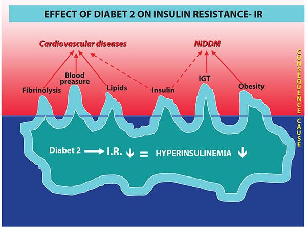 effect_of_diabet2_on_insulin_resistance