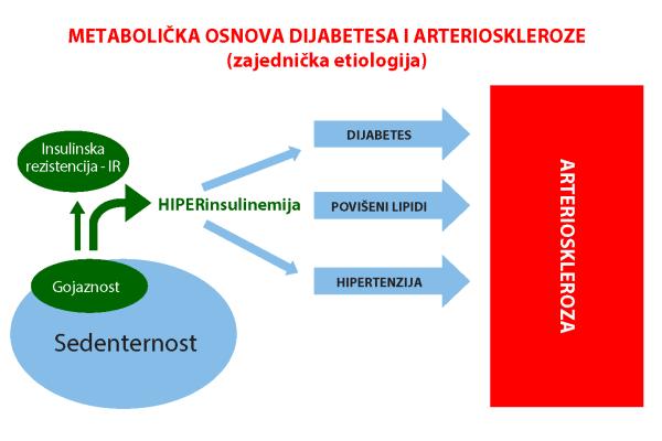 metabolicka_osnova_dijabetes_arterioskleroza