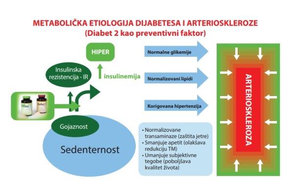 metabolicka_etiologija_dijabetesa_i_arterioskleroze